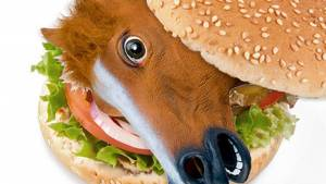 horse meat burger, horse food fraud
